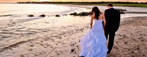 wedding-highlight